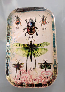 "NEW 4.5"" Insects Glass Paperweight"
