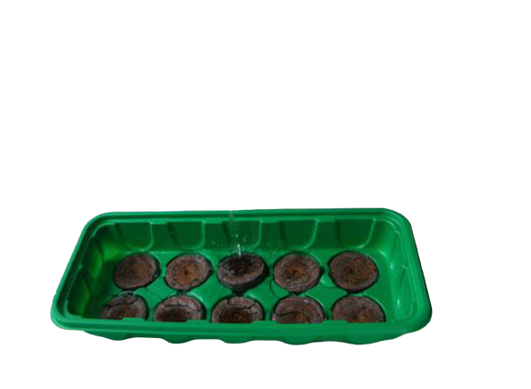 Seed Nursery Trays
