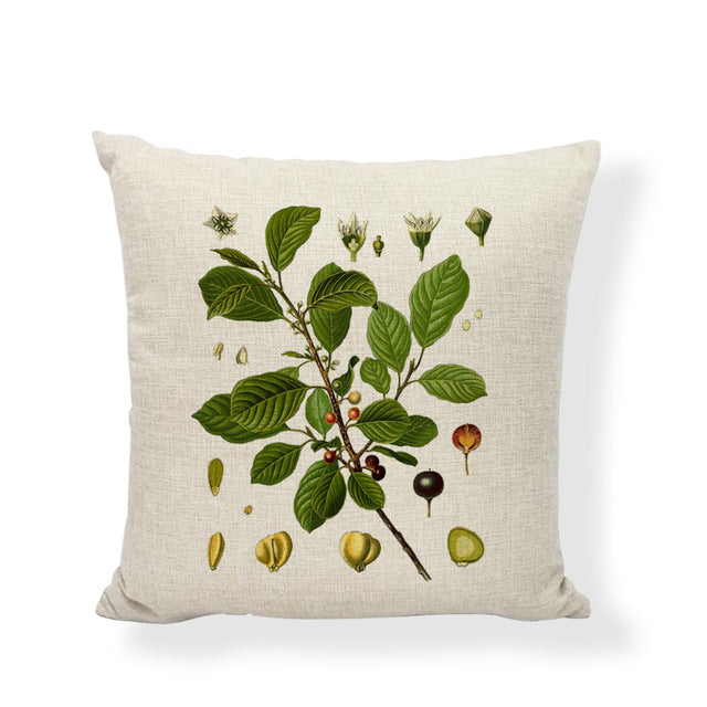Linen Cotton Pillow Case