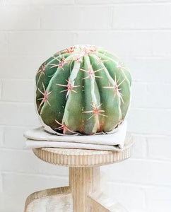 Round green barrel cactus pillow made out of linen and canvas sitting atop a wooden stool against a white brick background