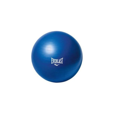 Gym Ball EverLast / 55 cm