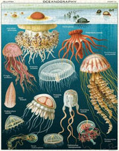 "Load image into Gallery viewer, 1000 pc Vintage Puzzle ""Jellyfish""- Cavallini - Lemon And Lavender Toronto"