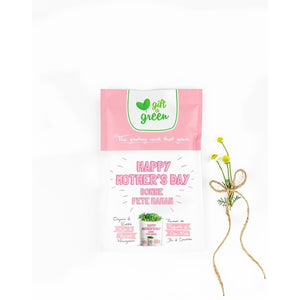 Gift-a-Green : Mother's Day Pouch - Lemon And Lavender Toronto