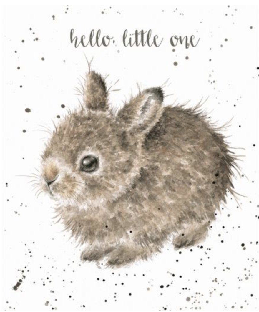 Hello Little One Card - Lemon And Lavender Toronto