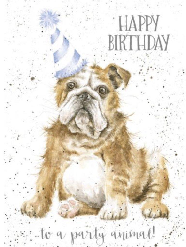 Party Animal Dog Birthday Card - Lemon And Lavender Toronto