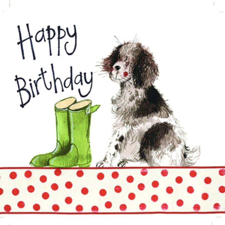 Springer Spaniel Dog Birthday Card - Lemon And Lavender Toronto