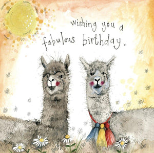 Sunshine Alpacas Birthday Card - Lemon And Lavender Toronto