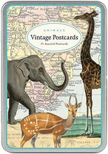 "Load image into Gallery viewer, Vintage Postcards "" Animals"" - Cavallini - Lemon And Lavender Toronto"