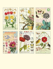 "Load image into Gallery viewer, Vintage Postcards "" Floral & Fauna"" - Cavallini - Lemon And Lavender Toronto"