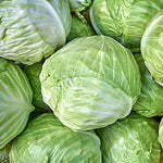 Cabbage, Green - 1 count ITEM 6348