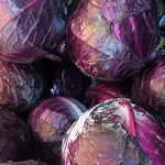 Cabbage, Red - 1 count ITEM 6349