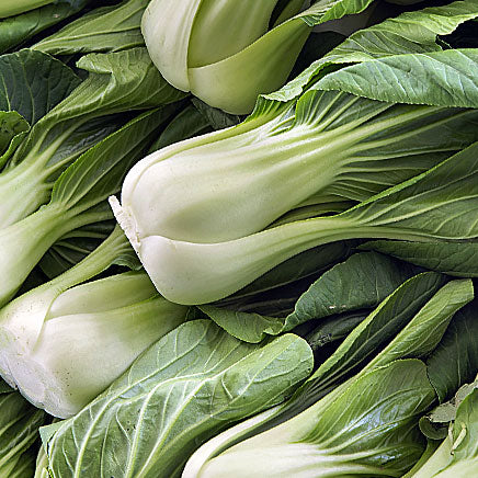 Cabbage, Bok Choy - 1 count ITEM 2501