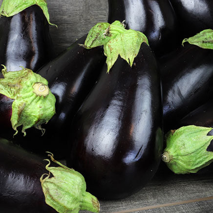 Eggplant, purple - 1 count ITEM 5905