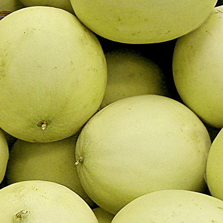 Honeydew - 1 count ITEM 6776