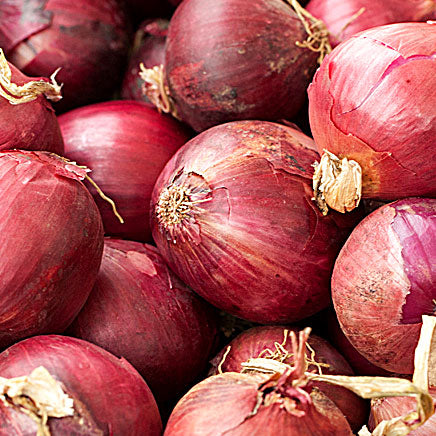 Onion, Red - 2 count ITEM 5876