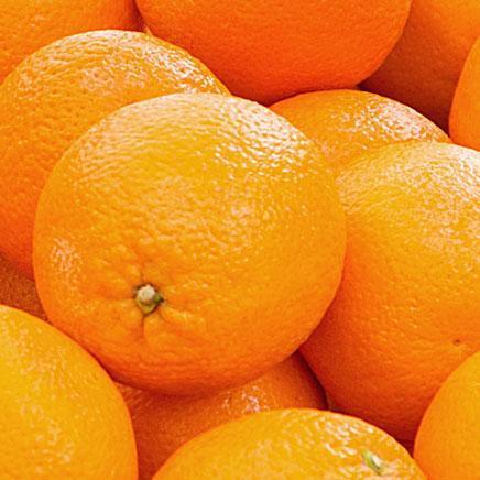 Oranges - 6 count ITEM 6433