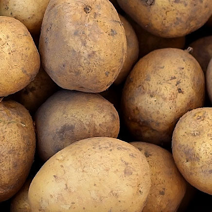 Potato, Baker Russet - 5 lb. bag ITEM 809