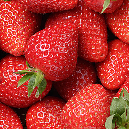 Strawberries - 1 lb. container ITEM 1411