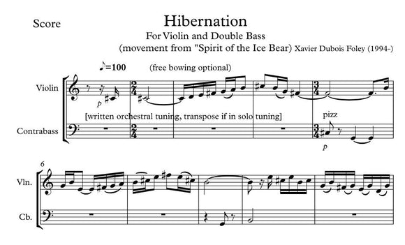 Hibernation - violin & double bass duo