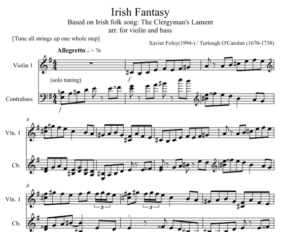 Irish Fantasy for Violin and Bass