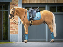 Load image into Gallery viewer, LeMieux Loire Dressage Pad - Ice Blue