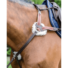 Load image into Gallery viewer, Prestige Evo 5 Point Breastplate w/ Running Attachment