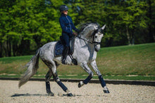 Load image into Gallery viewer, equestrian stockholm dressage pad - royal blue on grey horse