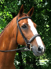 Load image into Gallery viewer, Red Barn Tryon Fancy Stitch Bridle