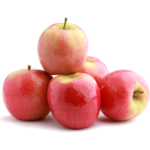 Apples Pink Lady Medium