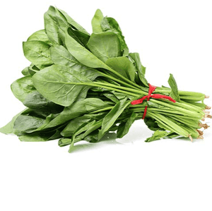 English Spinach Bunch