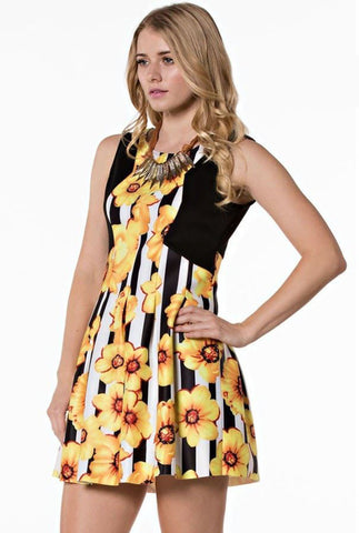 Floral Daisy Stripe Combo Print Fit & Flare Skater Dress