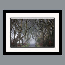 Load image into Gallery viewer, 'Into the fog' - The Dark Hedges