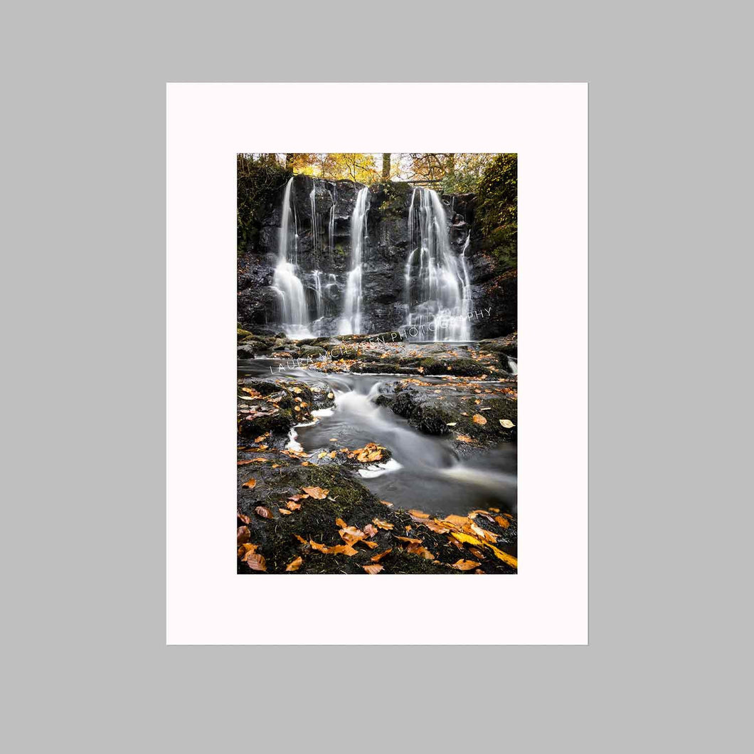 'Leaves Of Gold' - Glenariff Waterfall