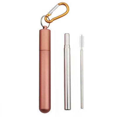 Inspire Ecoware™ - Stainless Steel Drinking Straw With Case
