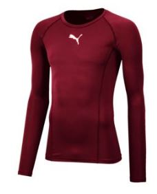 Hawcoat Park CC Baselayer