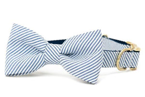 Blue Seersucker Dog Bow Tie Collar