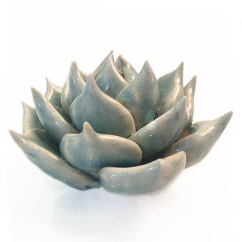 Light Blue Ceramic Succulent