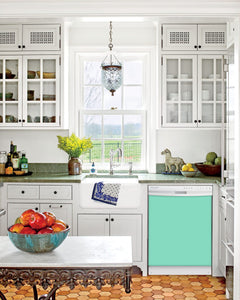Kitchen with White Cabinets Green Countertop Terra Cotta Floor Kitchen Sink with Window next to Aqua Green Magnet Skin on Dishwasher with White Control Panel