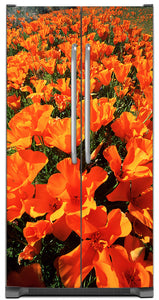 Orange Poppies Magnet Skin on Model Type Side by Side Refrigerator