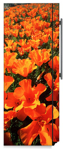 Orange Poppies Magnet Skin on Side of Refrigerator