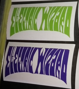 Electric Wizard Decal