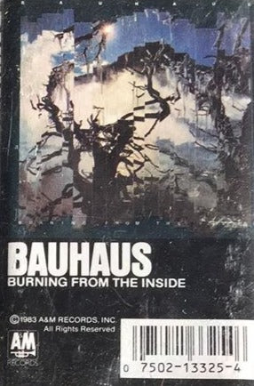 Bauhaus - Burning From the Inside