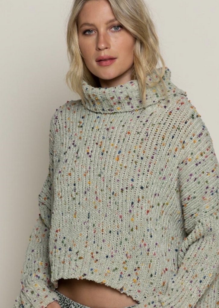 Sage Multi Colored Turtleneck Sweater