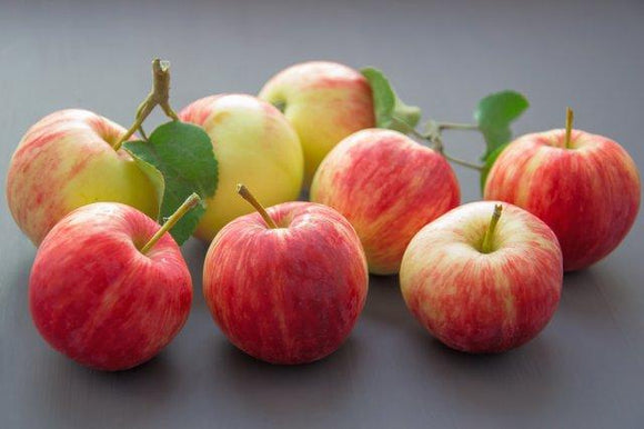 Apples -- Red Gala, Fuji, Pink Lady or Braeburn