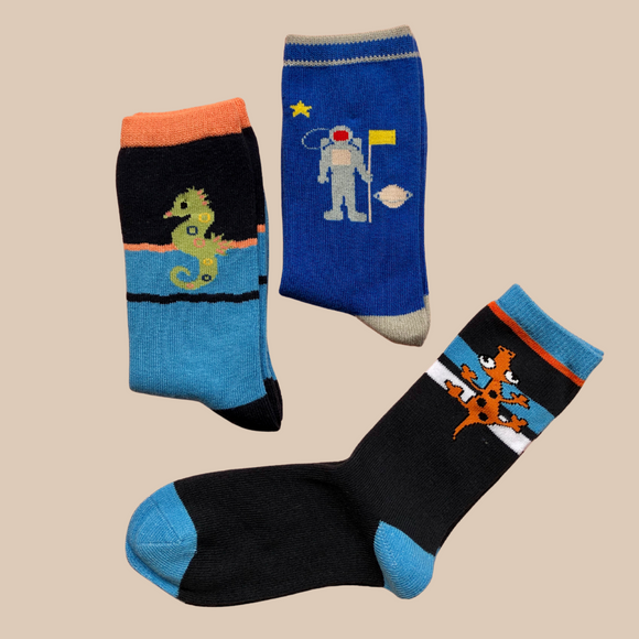 Boys Assorted Socks | 3 Pack