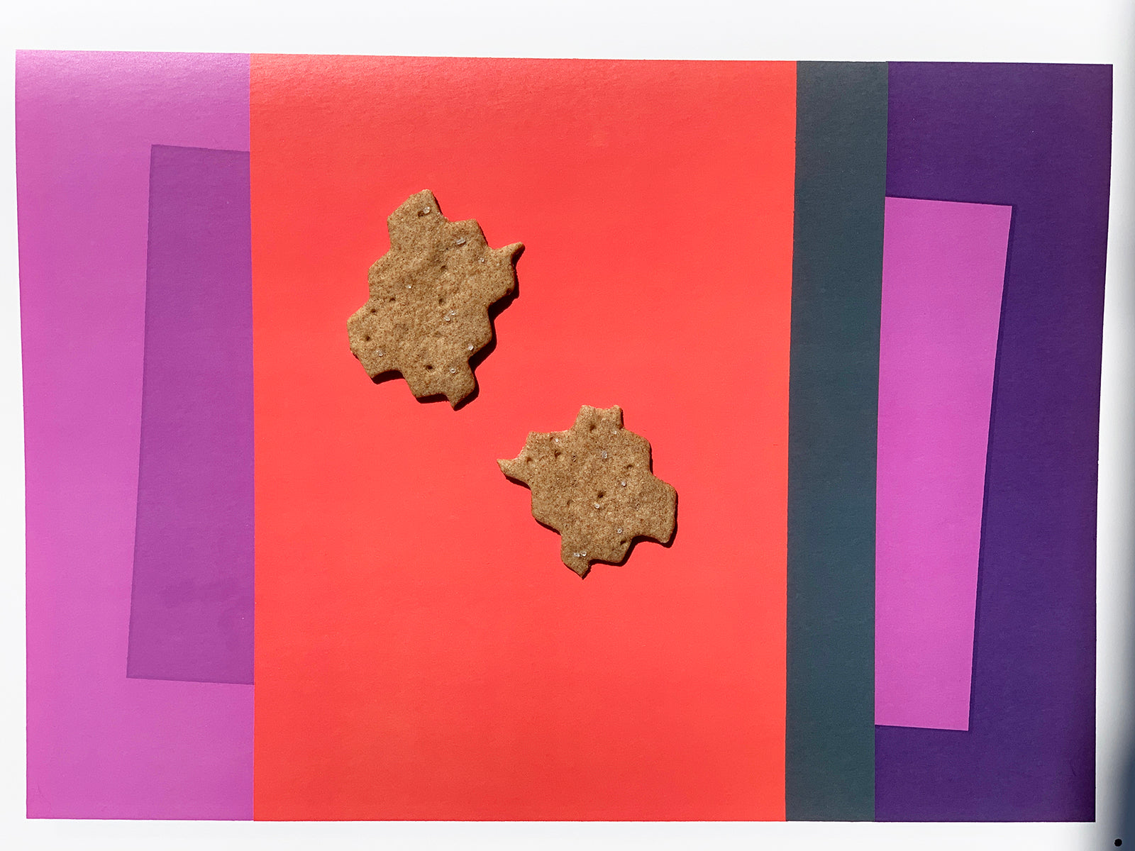 The Sourdough Project crackers on Josef Albers book