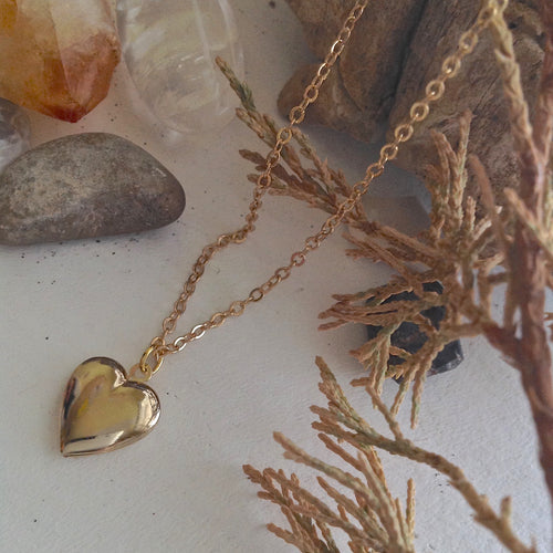 Dainty Gold Heart Charm Locket Necklace