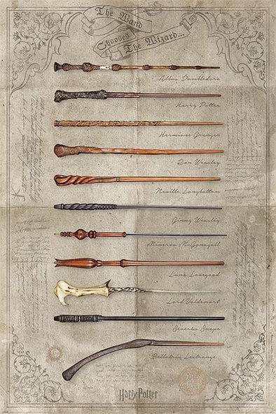 Harry Potter - Poster The Wand Chooses The Wizard