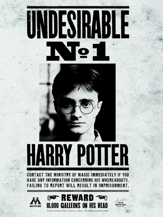 Harry Potter - Tela Undesirable NO.1 Popstore