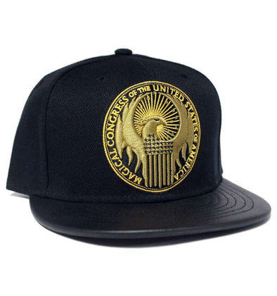 Fantastic Beasts - Chapéu Pala Curva Magical Congress of the U.S.A. - Popstore